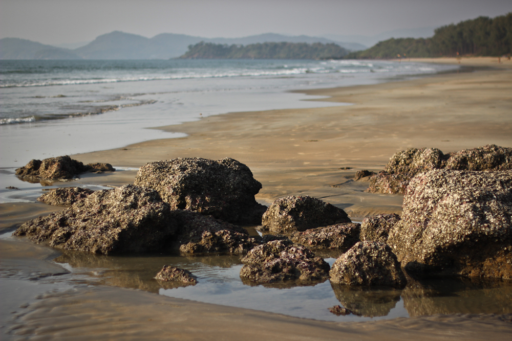 Grounding in Galgibaga Beach, Goa