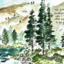 Desolation Wilderness Sketch-3